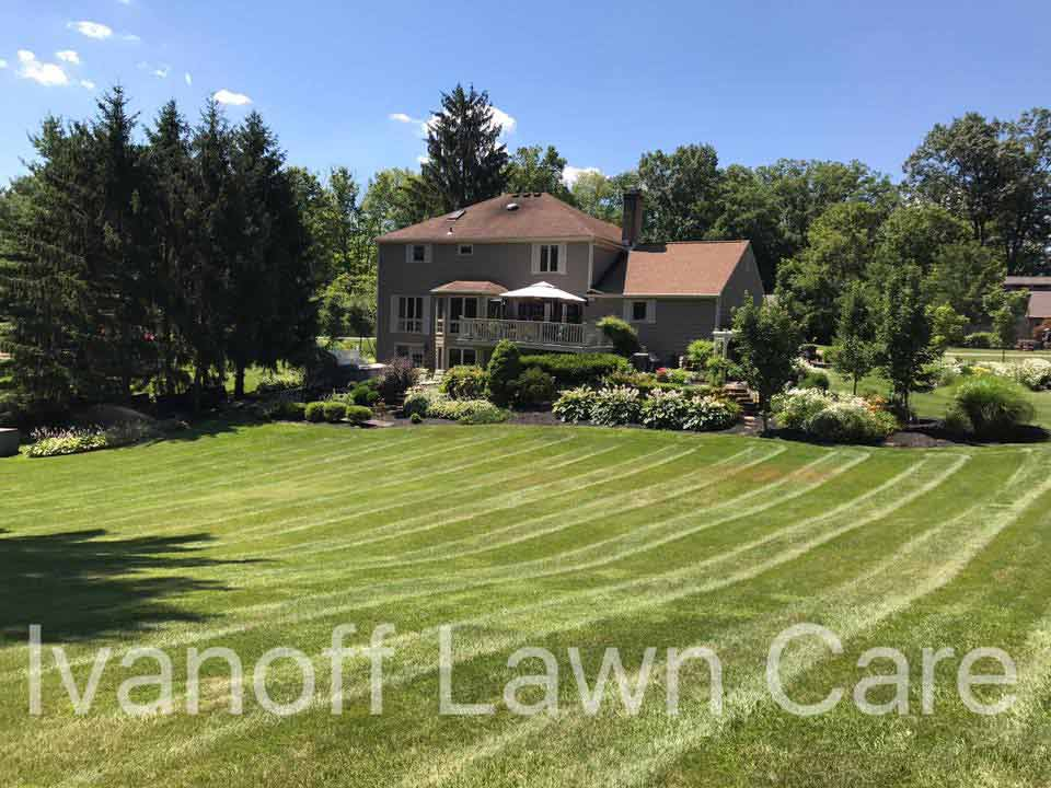 Beautifully mowed back yard of home by Delaware landscape and complete lawn care maintenance company.