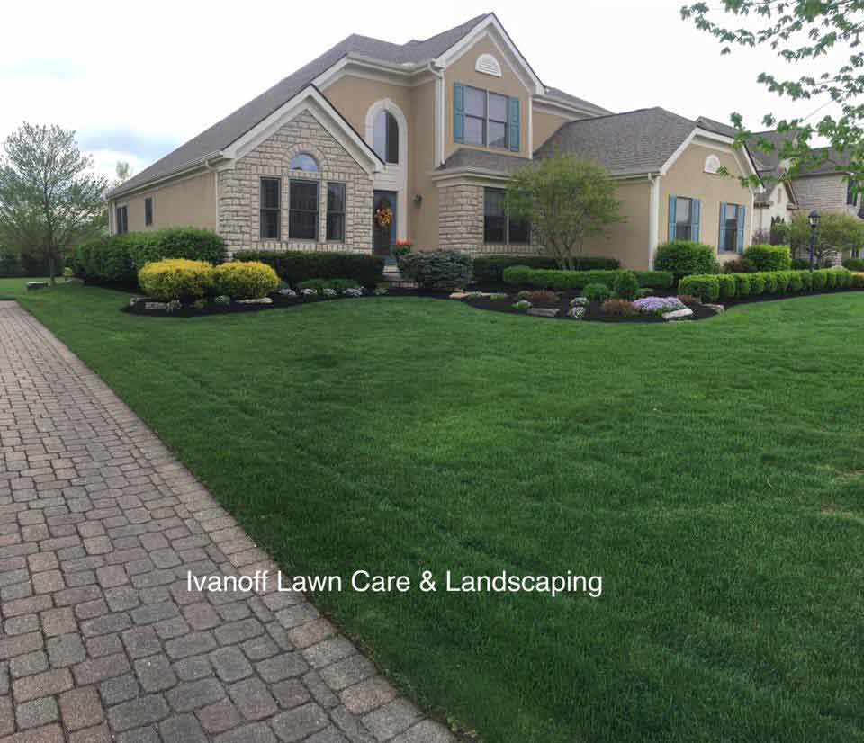 Green grass in front yard of home, lawn care maintenance by Ivanoff.