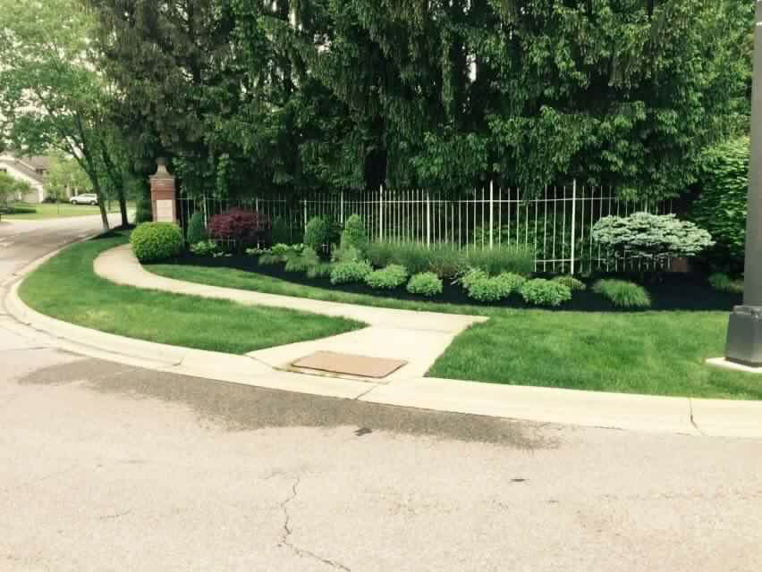 Neighborhood sidewalk with fresh cut grass cared for by local lawn care and landscape company.