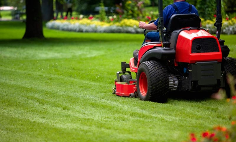 Commercial lawn mower cutting grass in backyard, lawn care by Ivanoff.