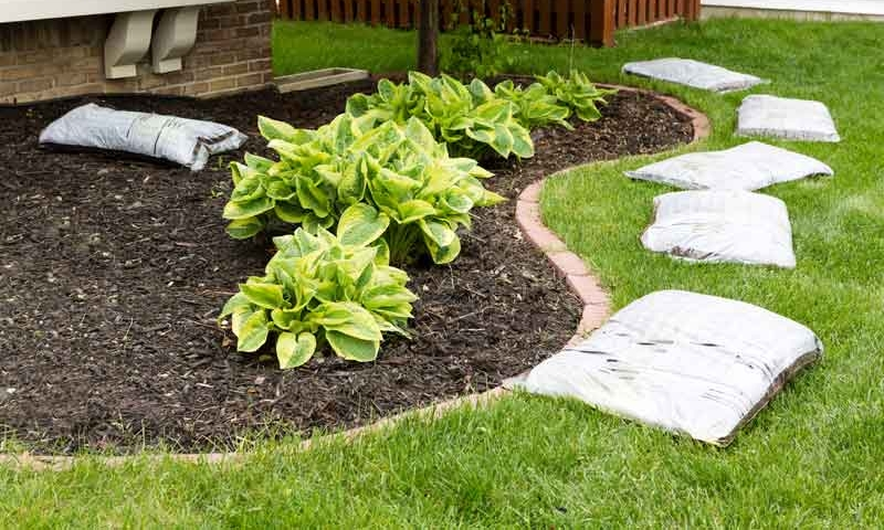 Plant bed of home's front yard part of complete lawn maintenance package of Ivanoff.