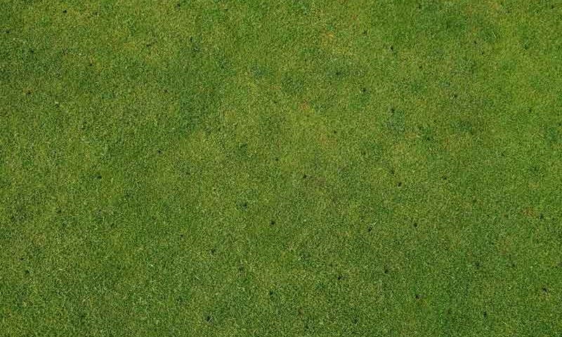 Aerial view of recently aerated grass, part of the complete lawn maintenance of Ivanoff lawn care and landscaping.