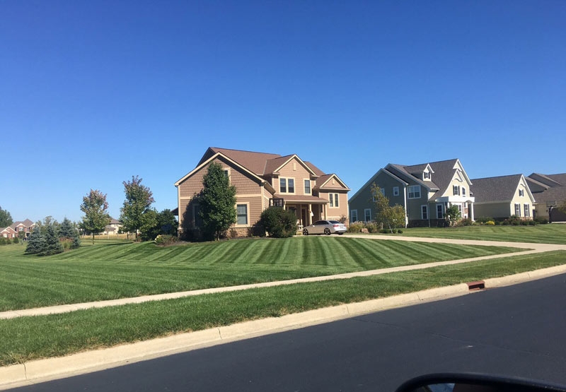 Fresh mowed green grass and blue skies, Columbus landscaping at it's finest.