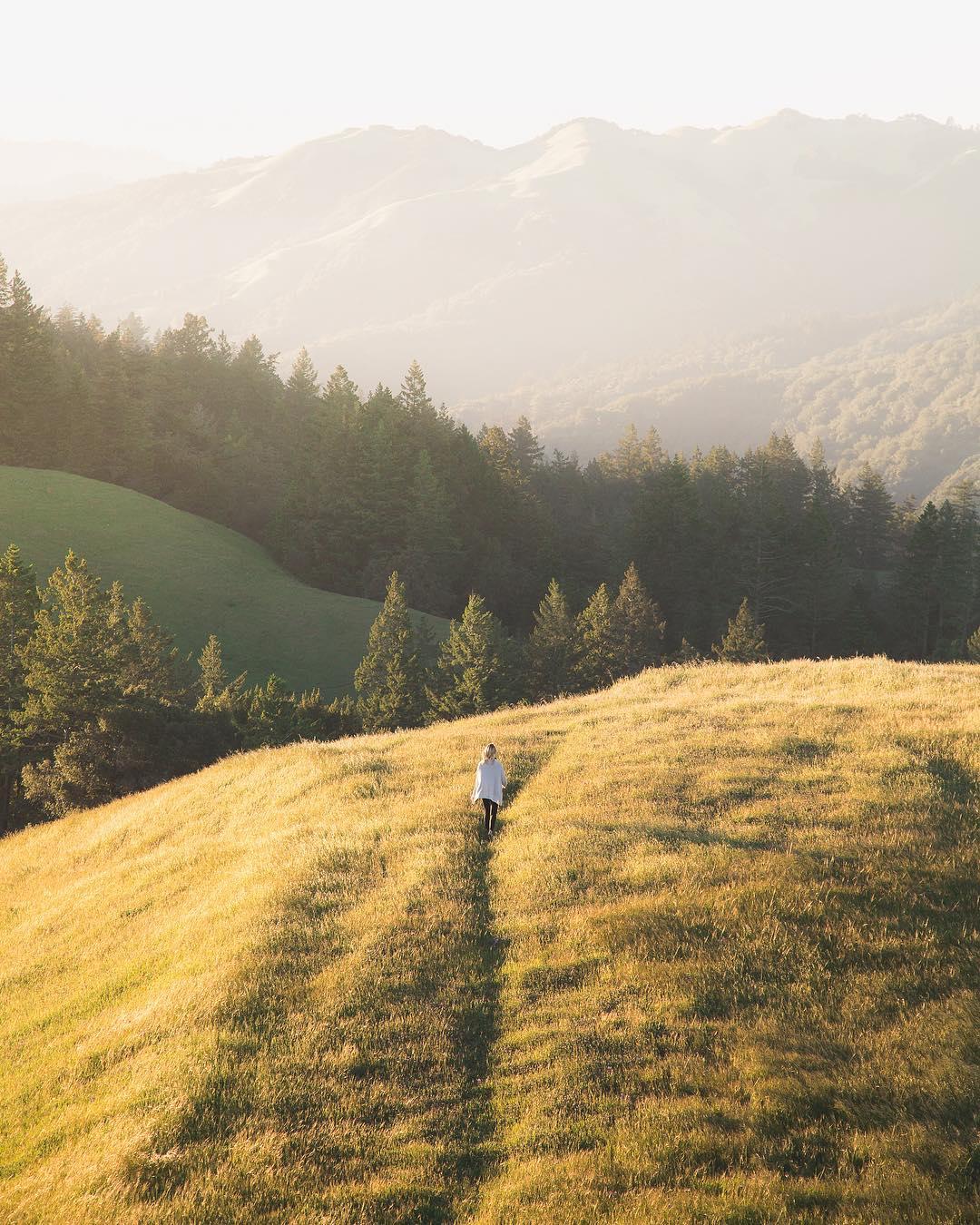 Mount Tamalpais State Park | Marin County, CA.