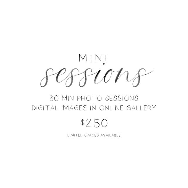 Ok, so many of you have asked for it so I'm going to give it a go! Mini summer photo sessions are now available! Check out all the info in my stories! Spaces are limited so snag your spot today! ⠀ .⠀ .⠀ .⠀ .⠀ #Charleston #westashley #shoplocal #charlestonblog #homeandgift #homesweethome #minisessions
