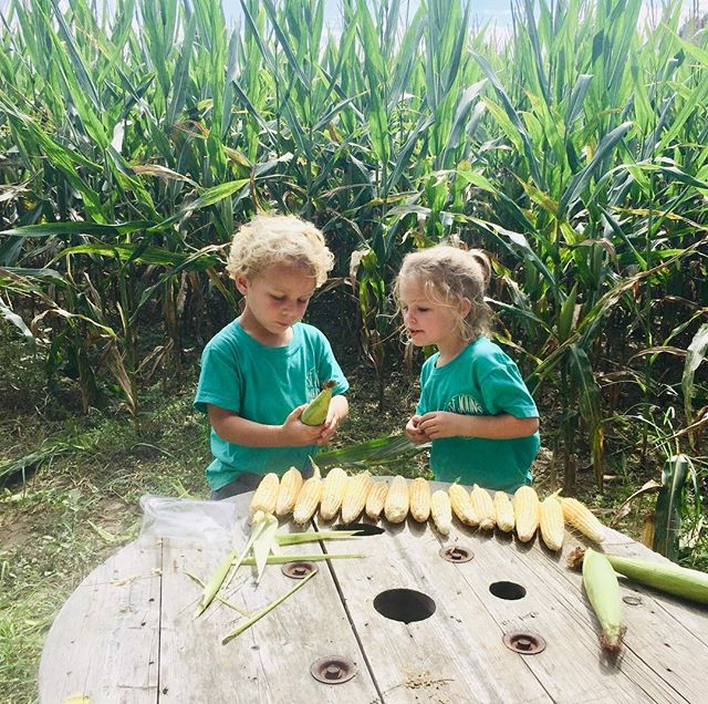 Happy #nationalfarmtoschoolmonth! 🌽