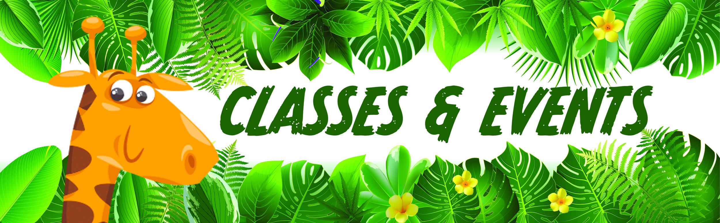 classes-1.jpg
