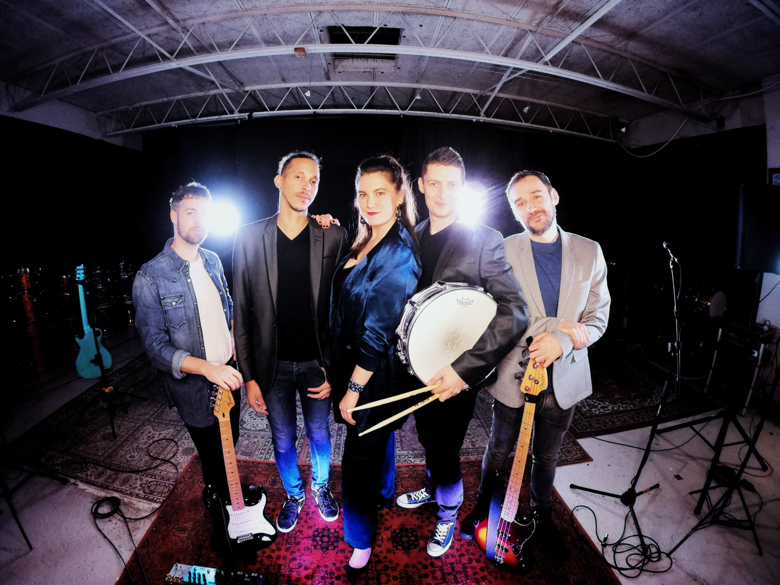 Five-piece band - Male and female vocals, guitar, keyboards, bass guitar and drums.