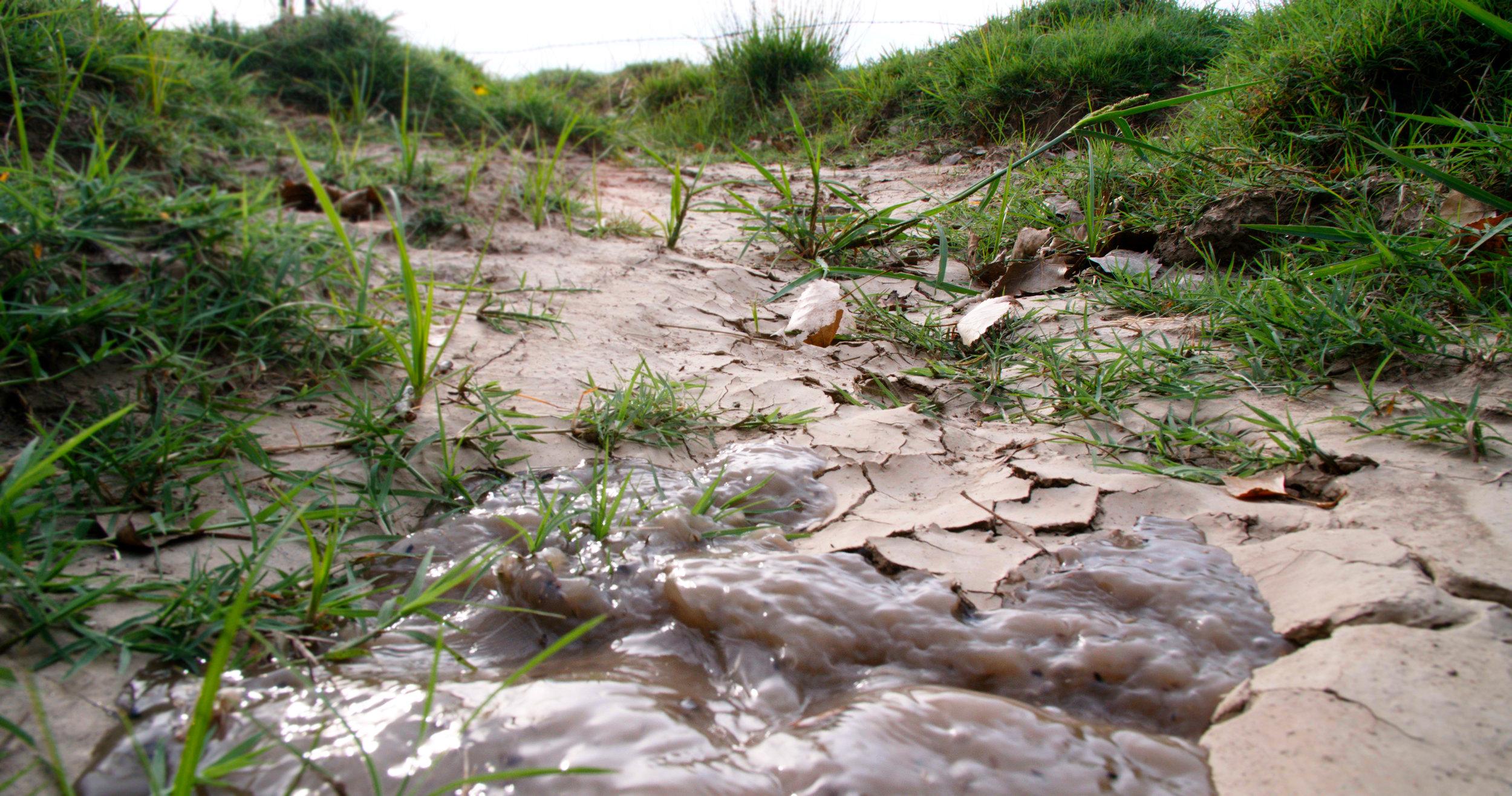 Irrigation Ditch © Blake Kimmel