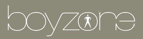 boyzone logo.jpg