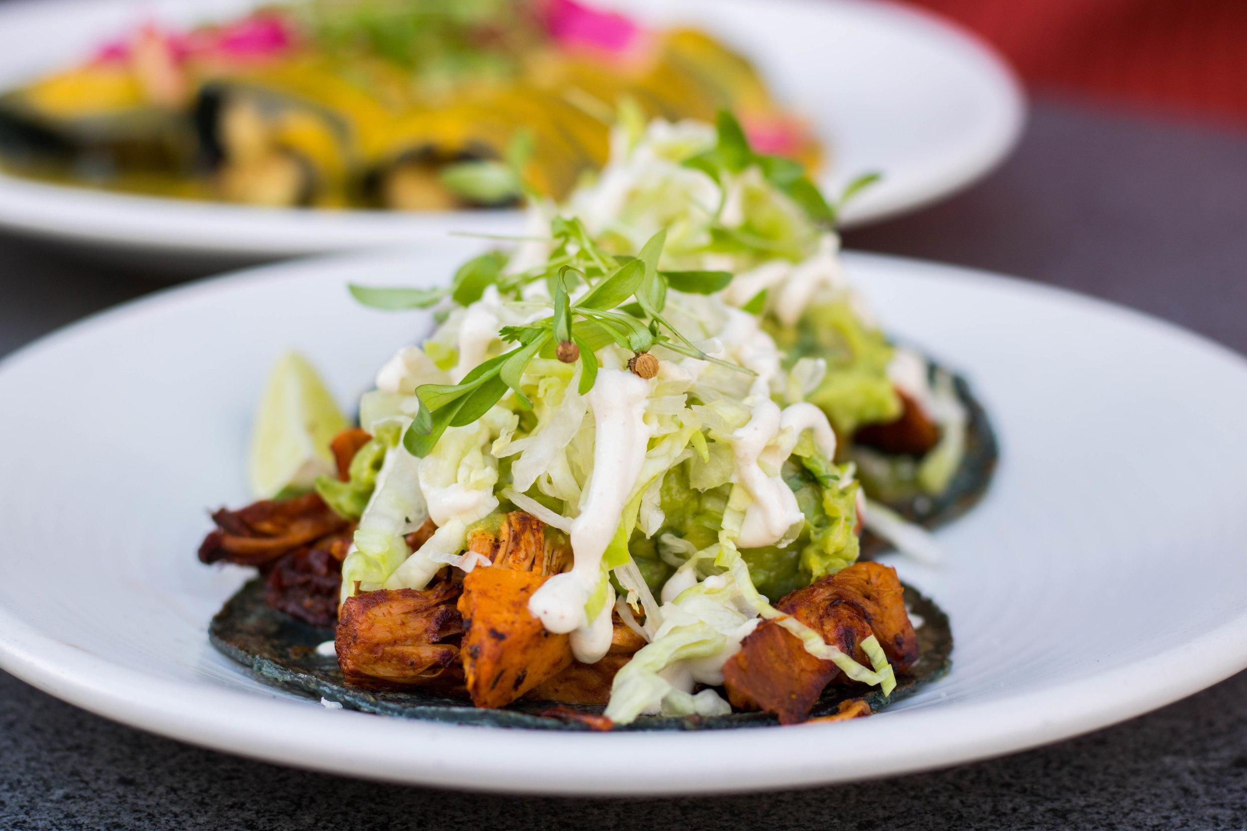 Jackfruit Barbacoa Tacos