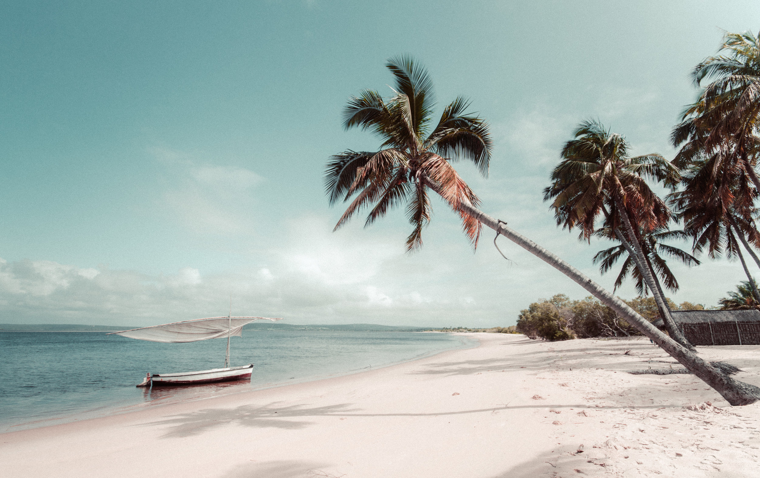 Tropical Cruise Escape Close to Home - From 7 nights from $769pp twin shareSave up to $840 per stateroom plus pay 50% reduced depositIncludes main meals & entertainment onboard, port charges & government feesSale to : 30 Sept 2019Travel commenced: 18 Dec 2019 and completed 30 Jul 2020
