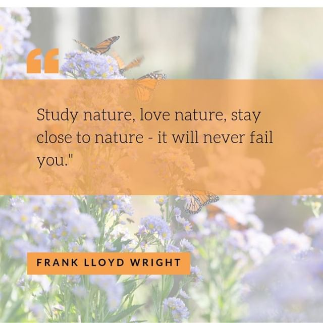 Frank Lloyd Wright and our own hero E. O. Wilson... clearly kindred spirits when it comes to an appreciation of our need for nature.  More than 140 trees coming to Judges Square in the next few months... look forward to sharing more soon from landscape architect Kevin Campion!  #eowilson #franklloydwright #biophilia #studynature #lovenature #biophilicdesign #campionhruby #landscapearchitecture #ticklecreative #judgessquare