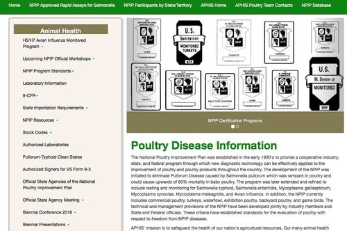 poultryimprovement.jpg