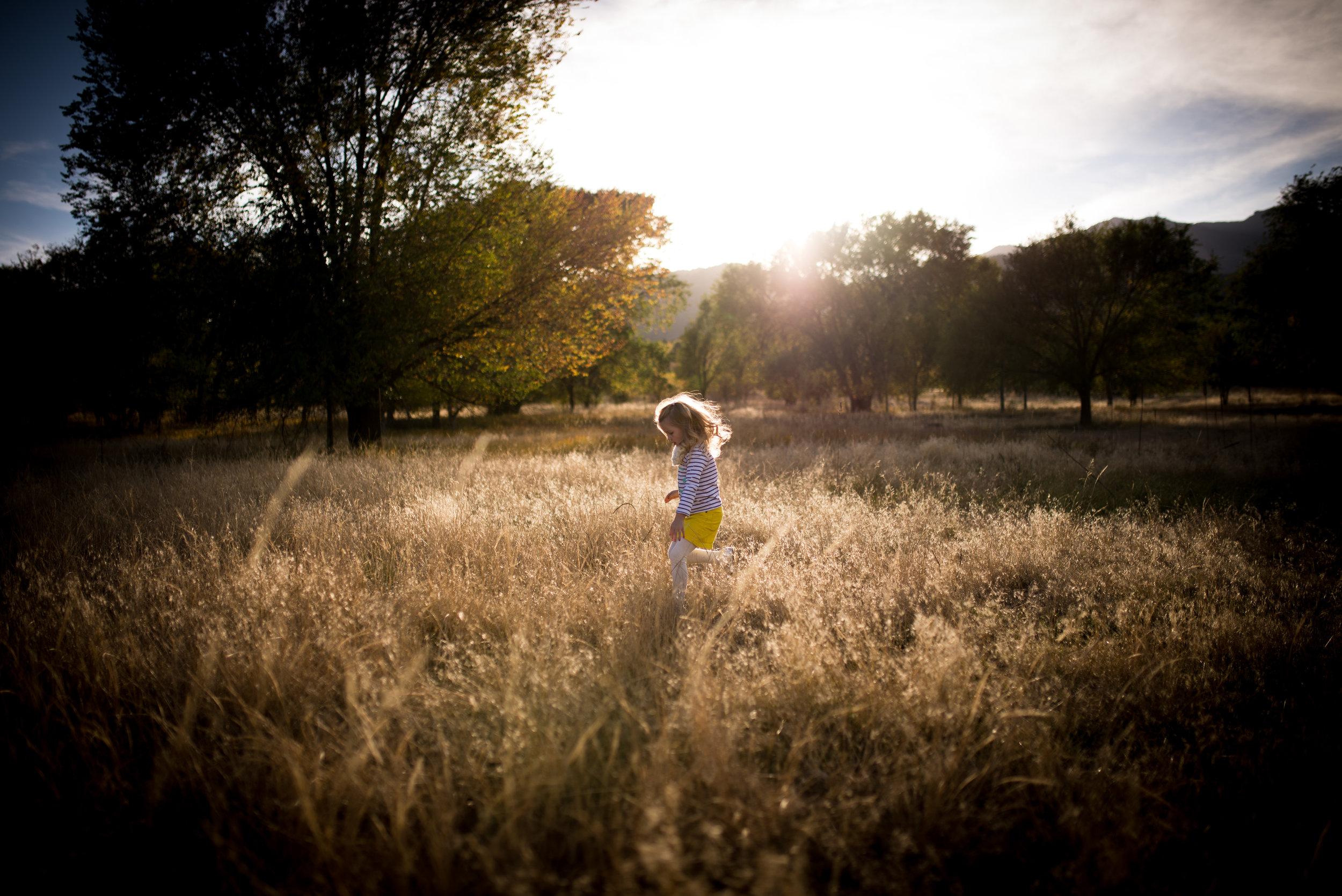 organic_light_photography-51.jpg