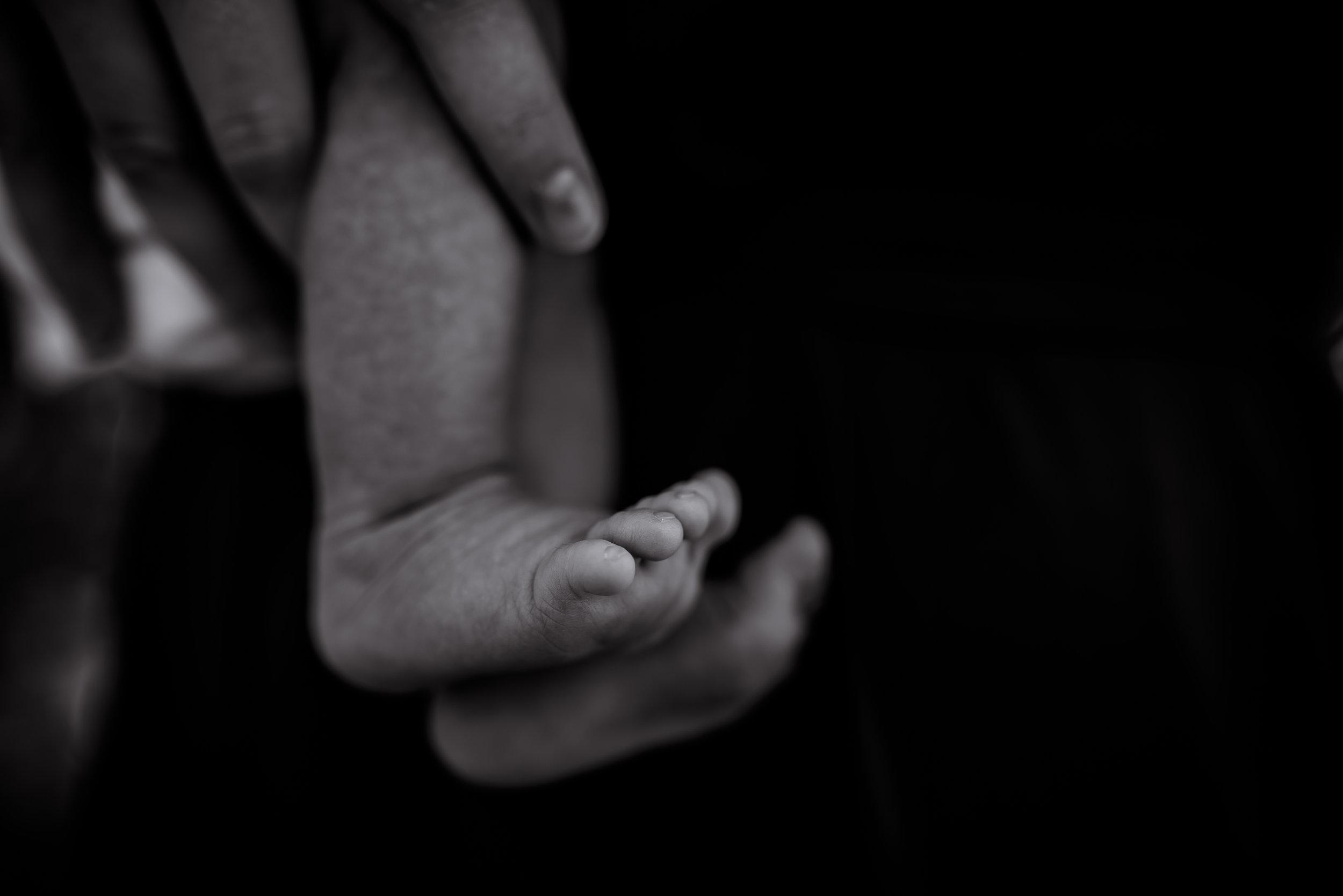 organic light photography children and newborns (34).jpg