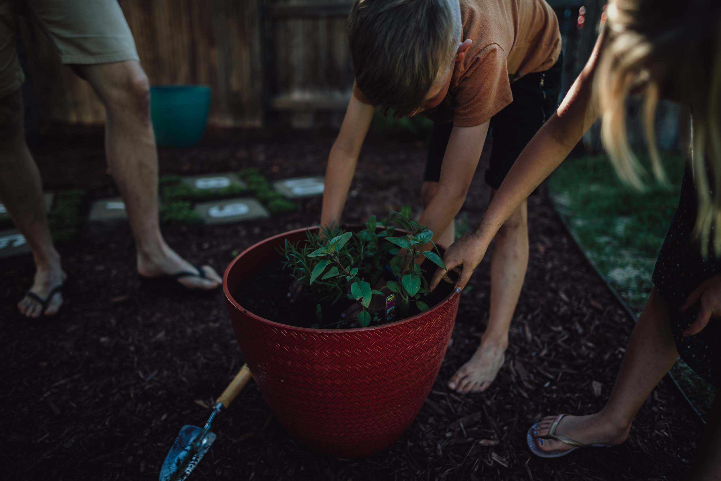 colorado springs family lifestyle gardening photography-68.jpg