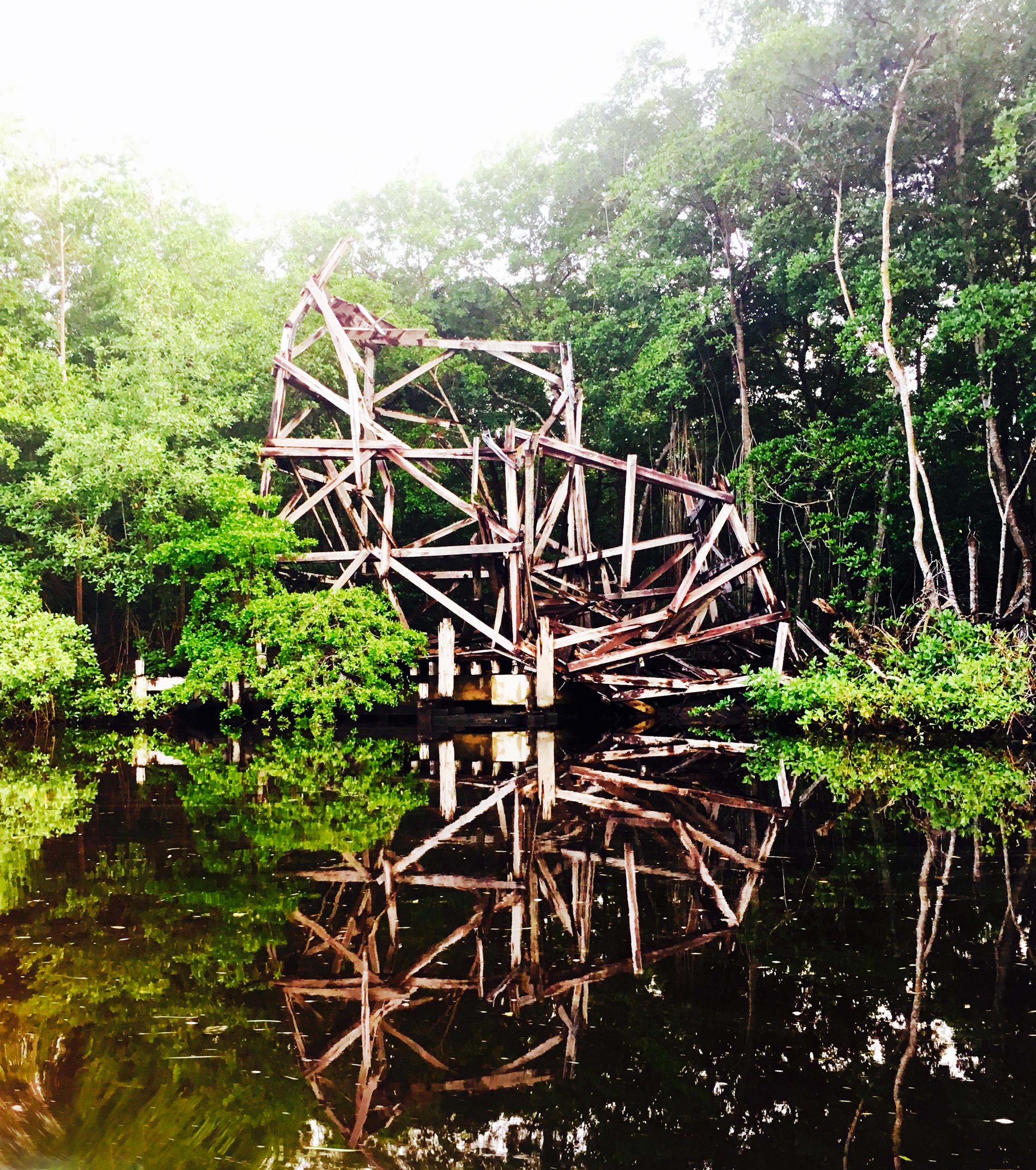 NISHLA-Design_Caroni-Swamp_Trinidad_Broken-Bridge_IMG_1080.jpg