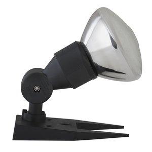 Spot light $5.50