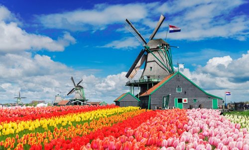windmill+netherlands.jpg