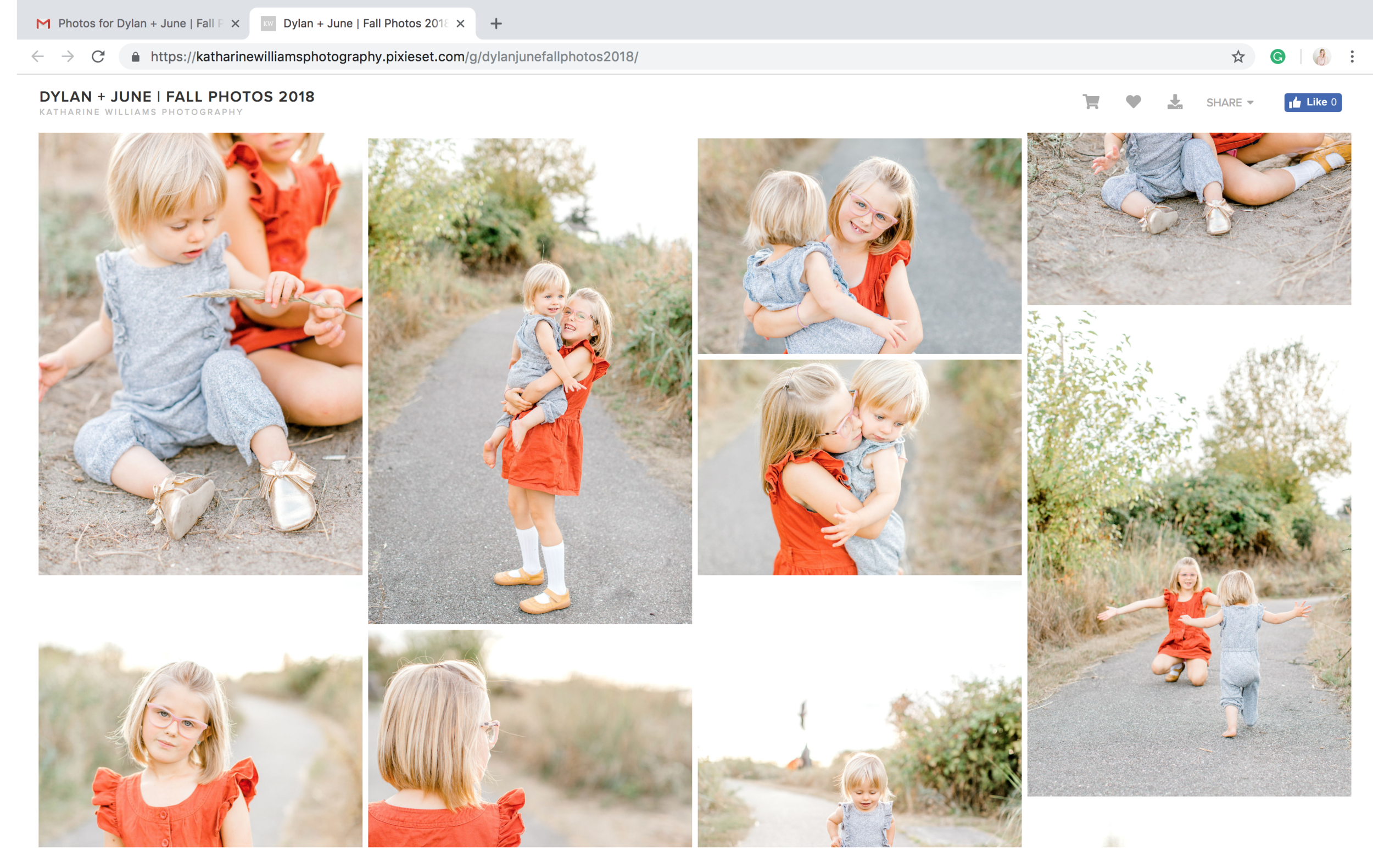 guide to downloading your images from Pixieset