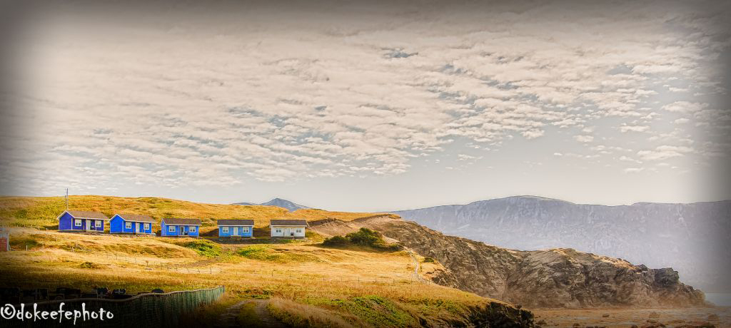 Visit Newfoundlandandlabrador.com and visitgrosmorne.com for information about The Fish Sheds and best places to stay