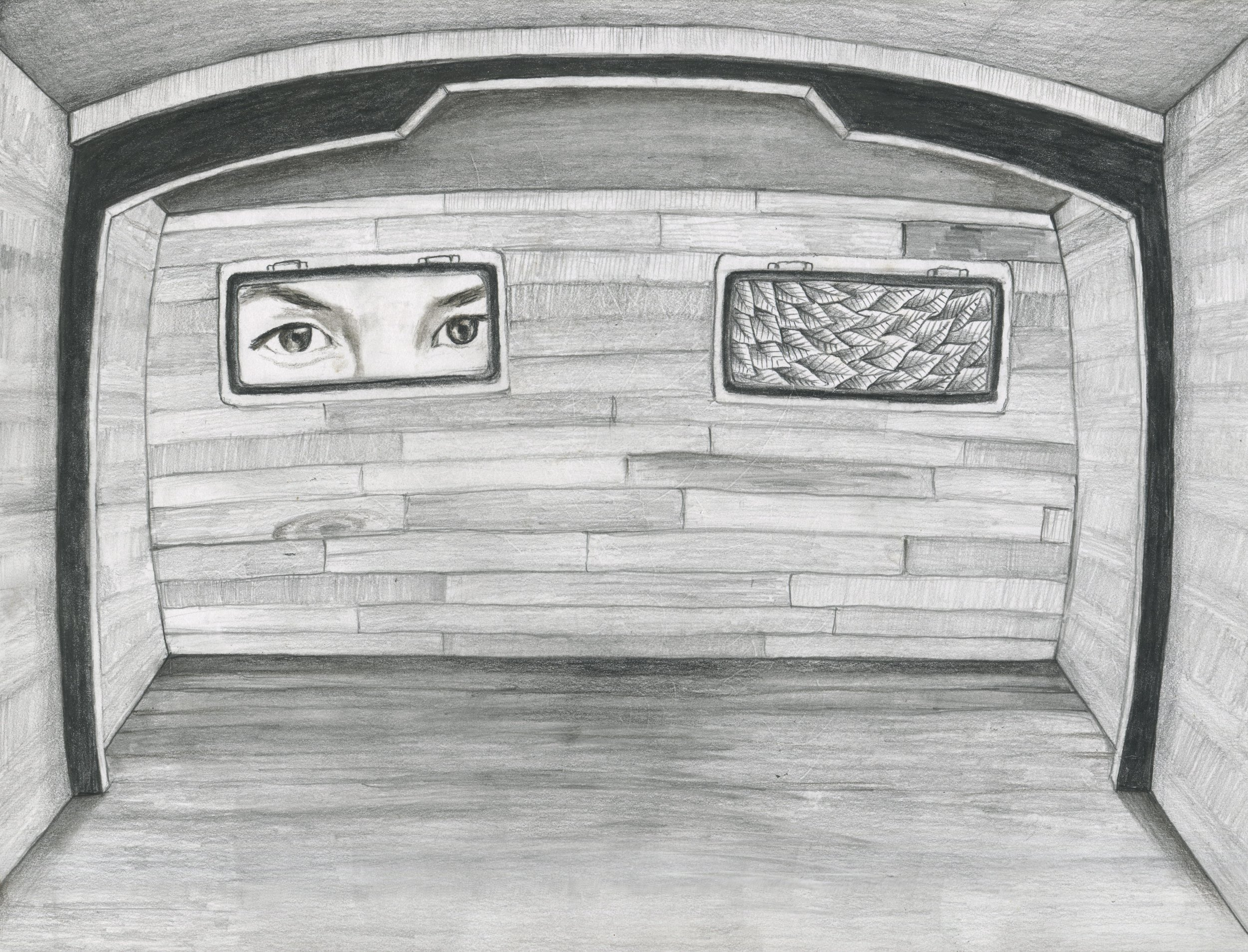 """Cabin Fever  12"""" x 9"""" graphite on paper  original available prints available"""