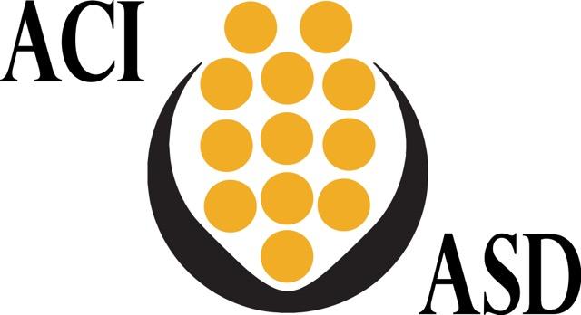 ACI_ASD Flag Logo_black and yellow w_words.jpeg