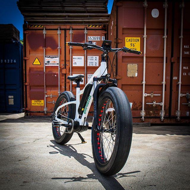 Go anywhere E-Bike - THE SUMO.  #ebike #ebikes #fatebike #fatbike #electricbike #hardtailbike #touringbike #lifestylebiking #batterypower #downhillbike #cruiser