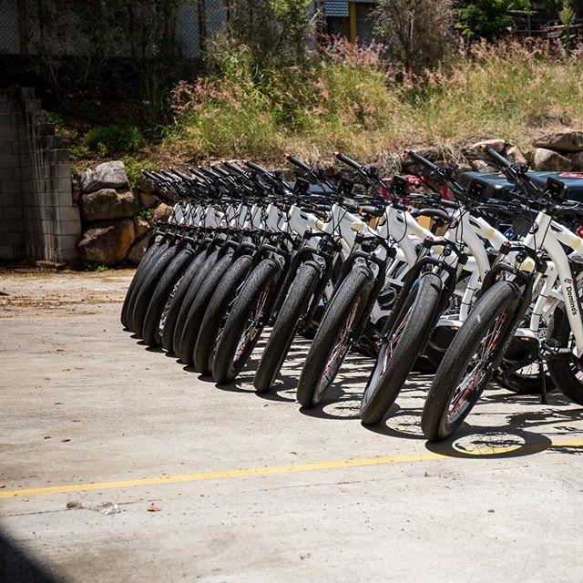 Sumo's are on the roll #ebike #ebikes #fatebike #fatbike #electricbike #Deliverybike #touringbike #lifestylebiking #batterypower #resturantbike #fooddelivery #oshi #sumobike #bikecourier #bikemessenger