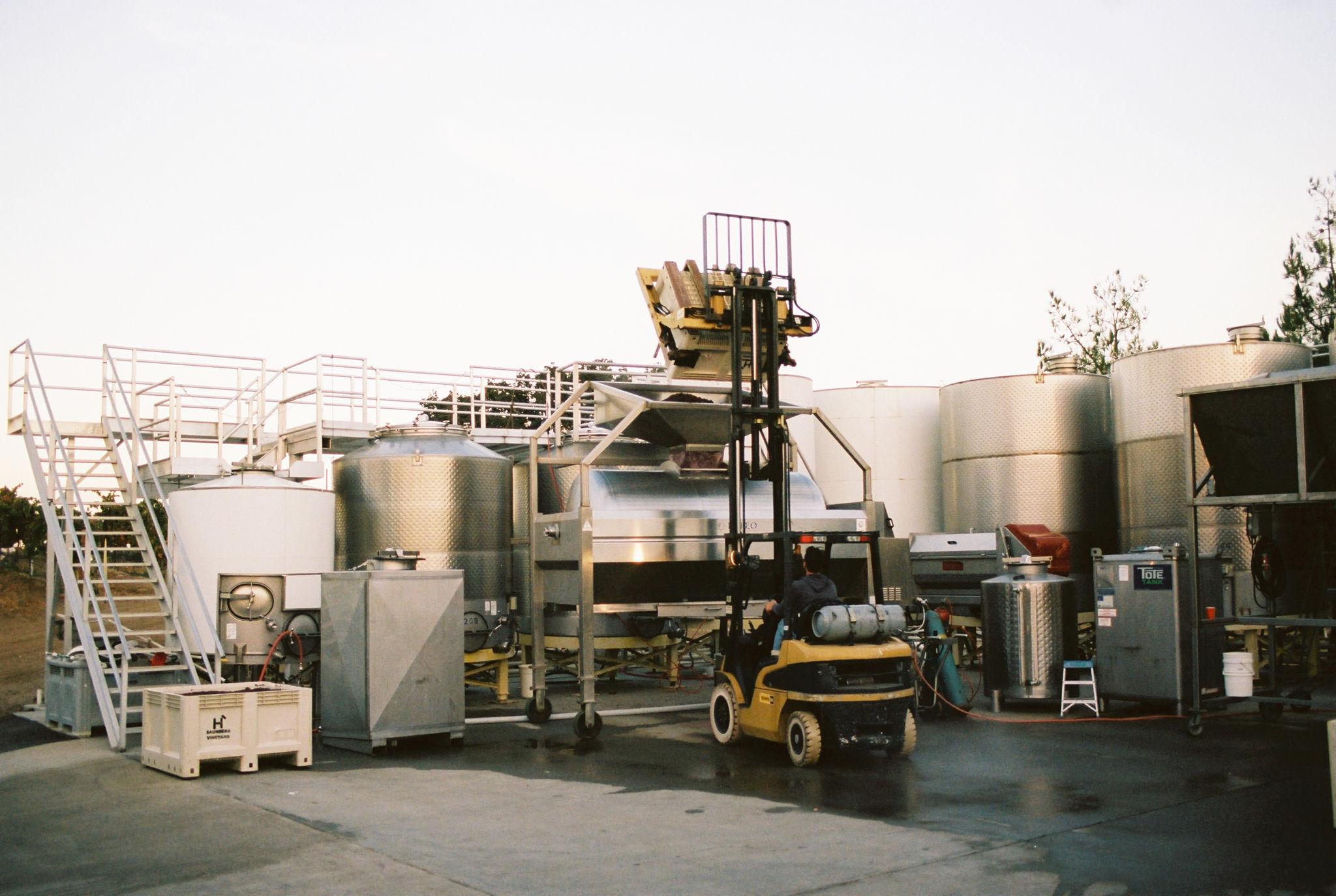 acacia_productions-halter_ranch-harvest-FILM-0021.jpg