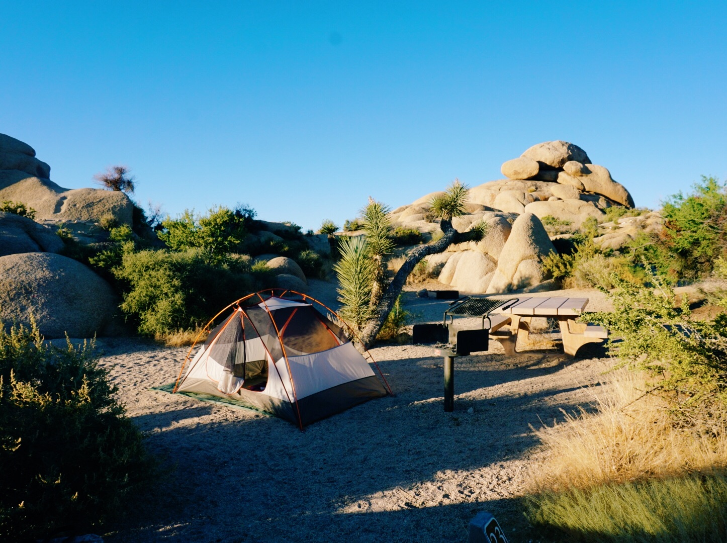 Tent set up at Jumbo Rocks in Joshua Tree National Park