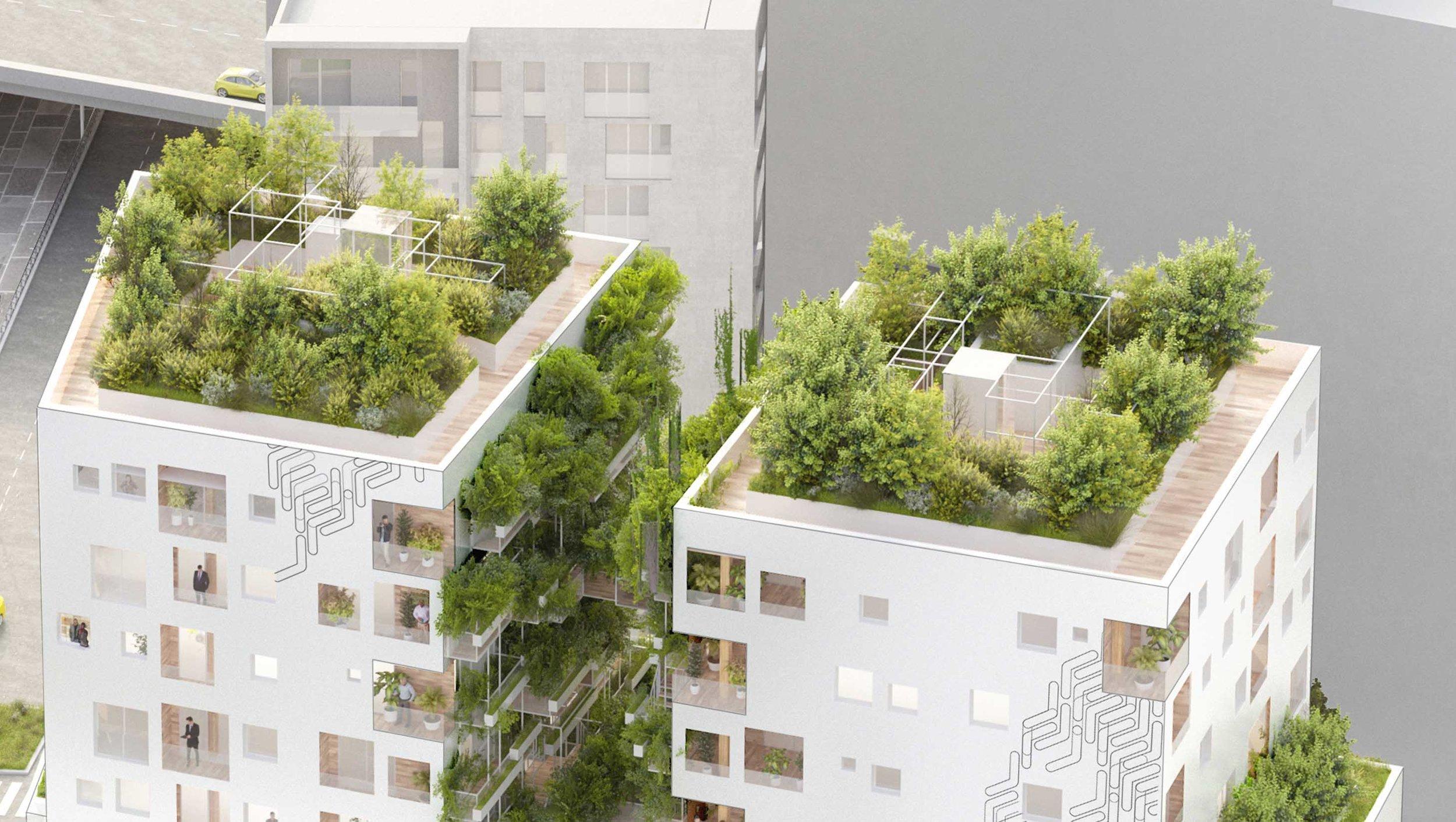 AR architectes Studio d'architectures Art & Build lan kaufman borad B1A3 semapa bruneseau massena (19).jpg