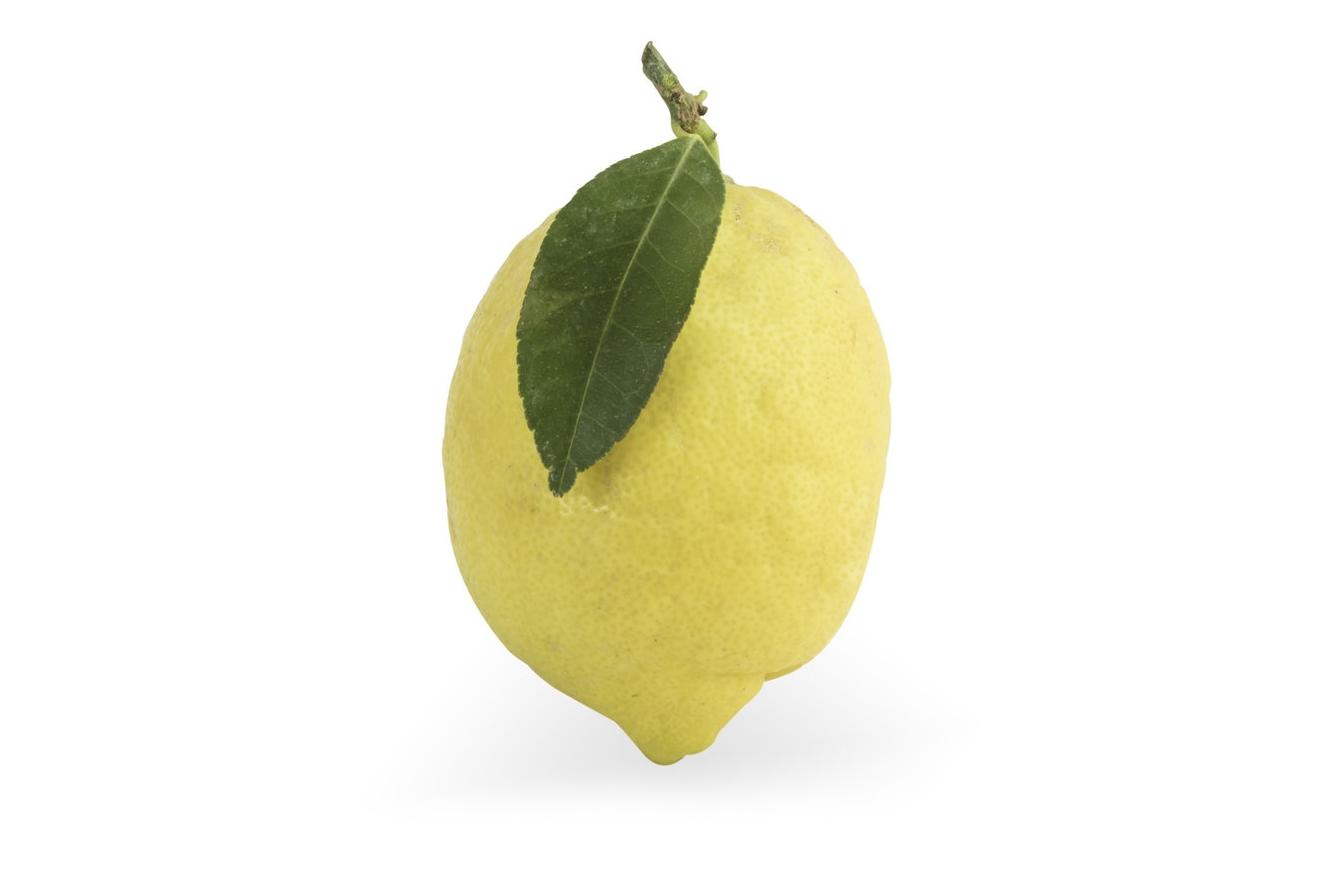 PNG Lemon.jpg