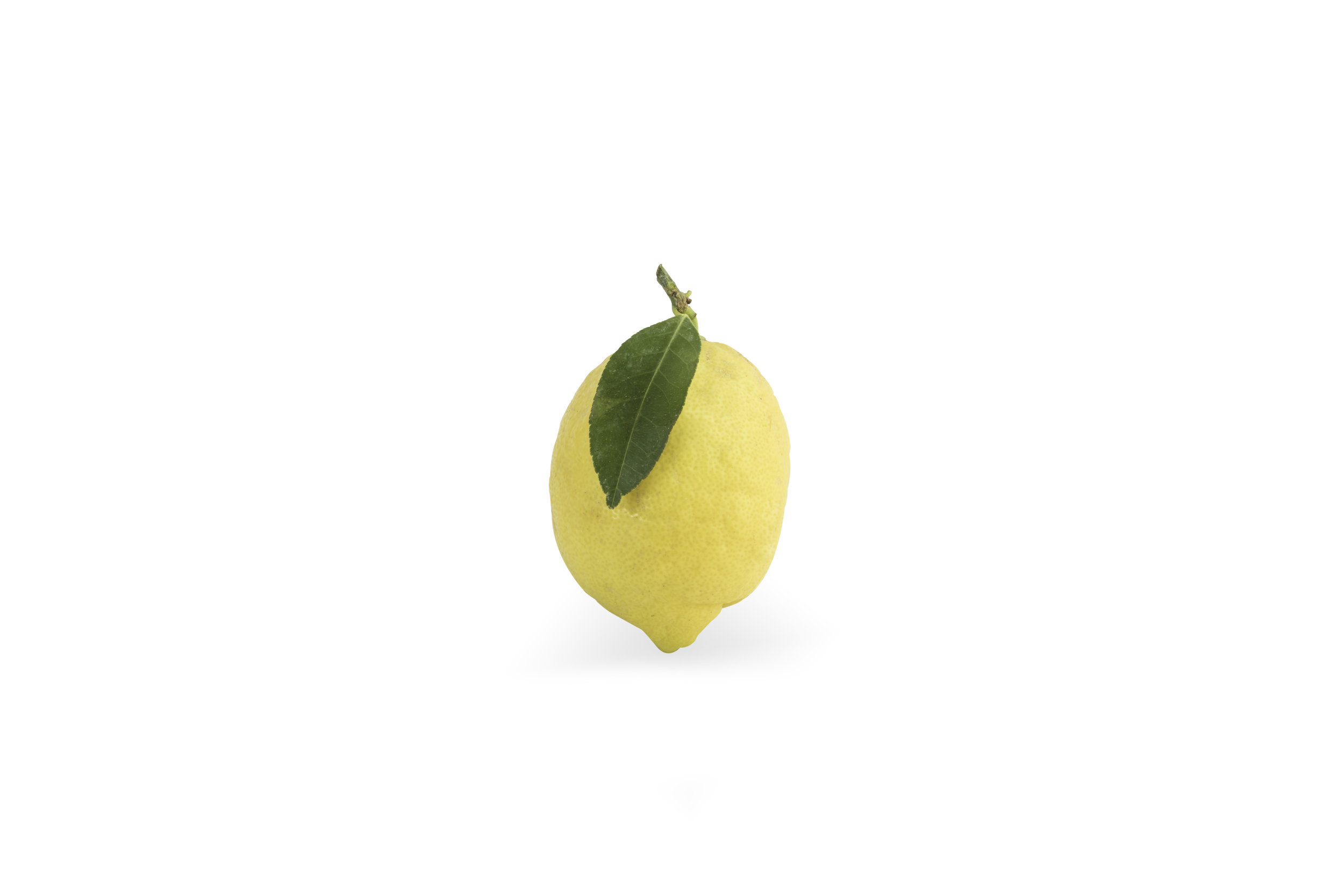 White Lemon pure.jpg