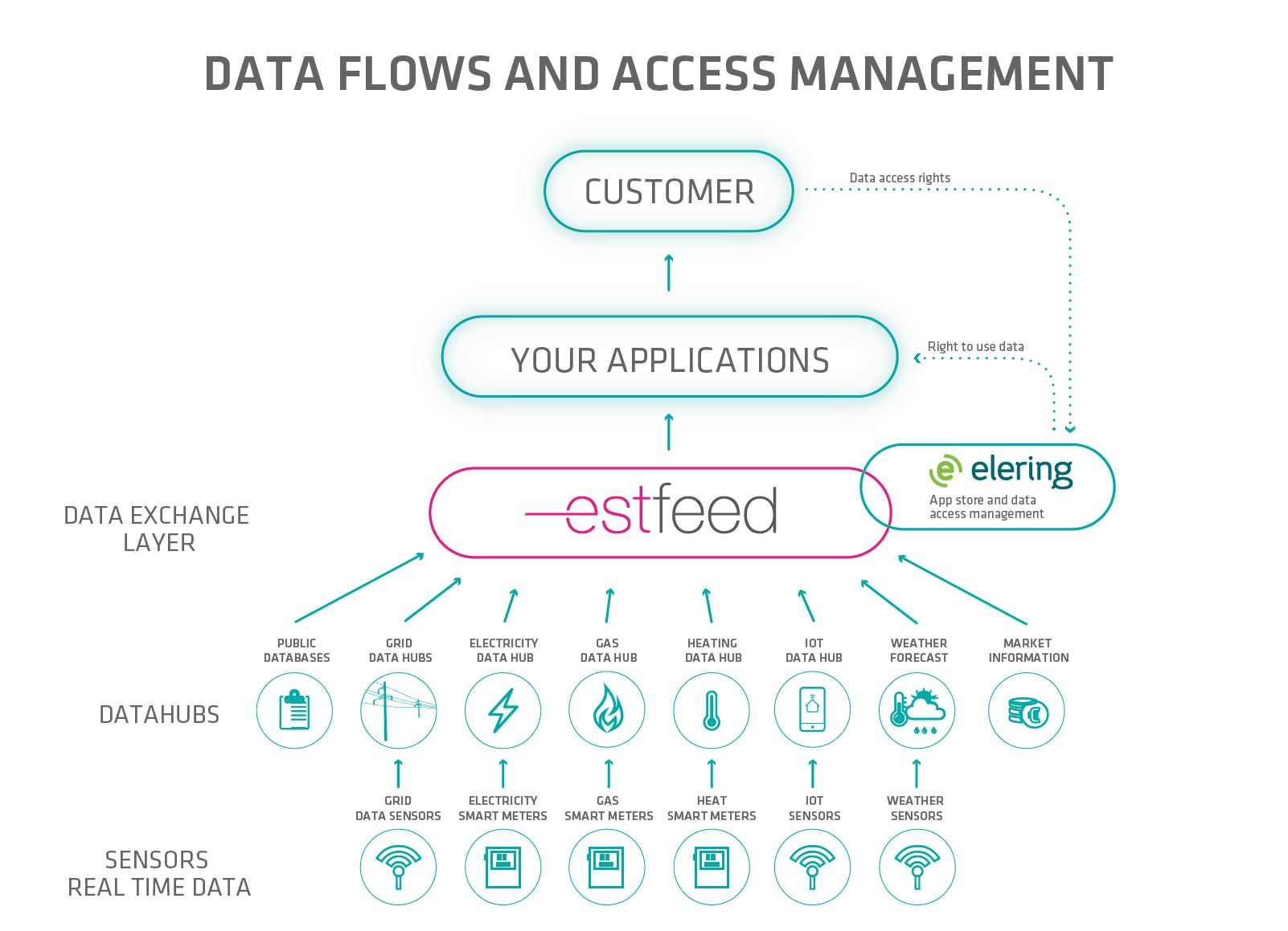 Access to electricity and gas smart meter data in Estonia