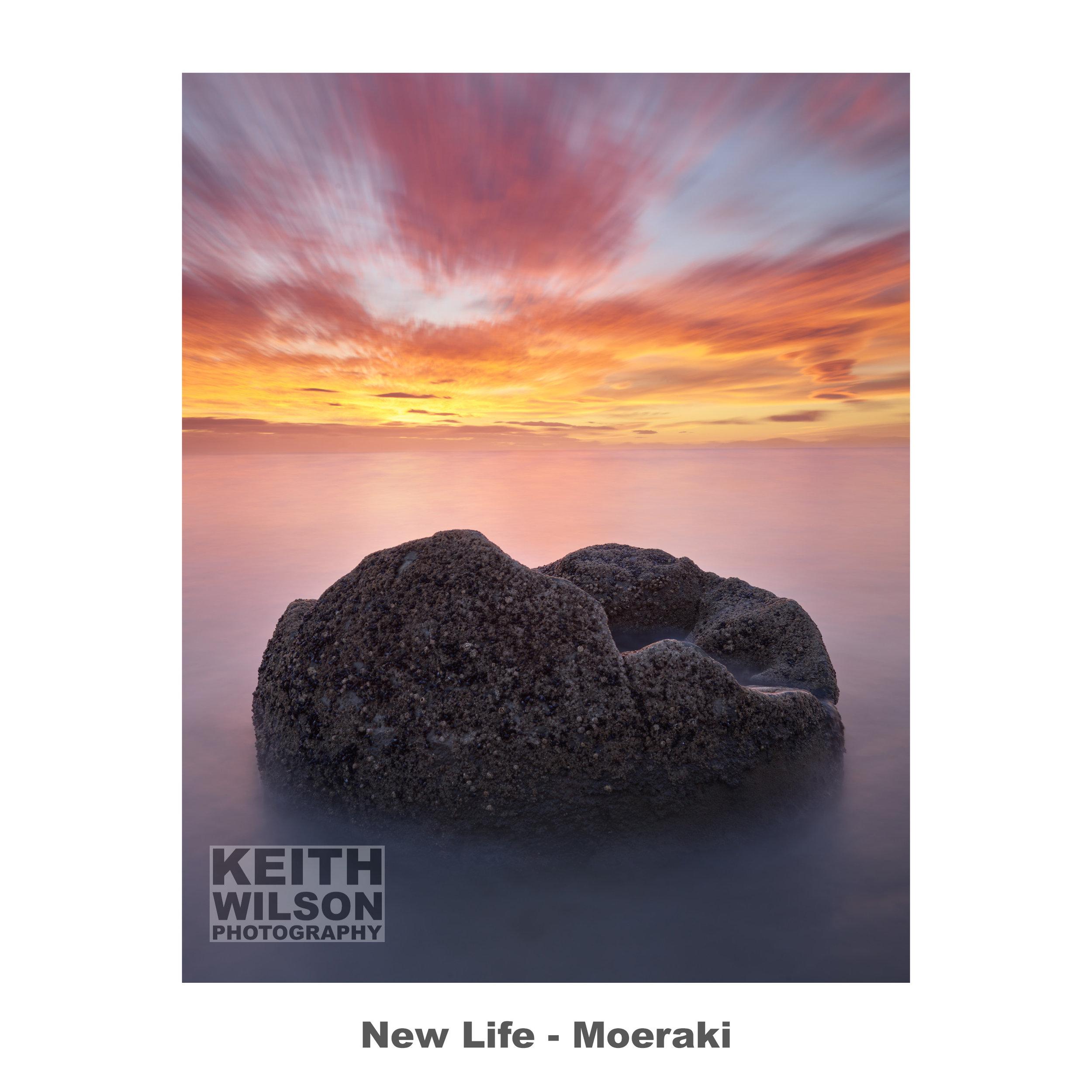 New Life - Moeraki