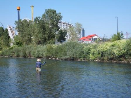 Fly fishing in the heart of urban Denver!