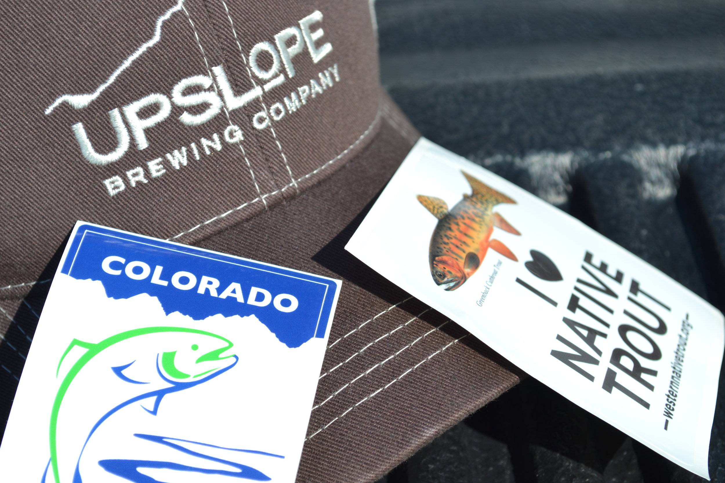Pictured: UpslopeBrewing Co., Western Native Trout Initiative, and Colorado Trout Unlimited.