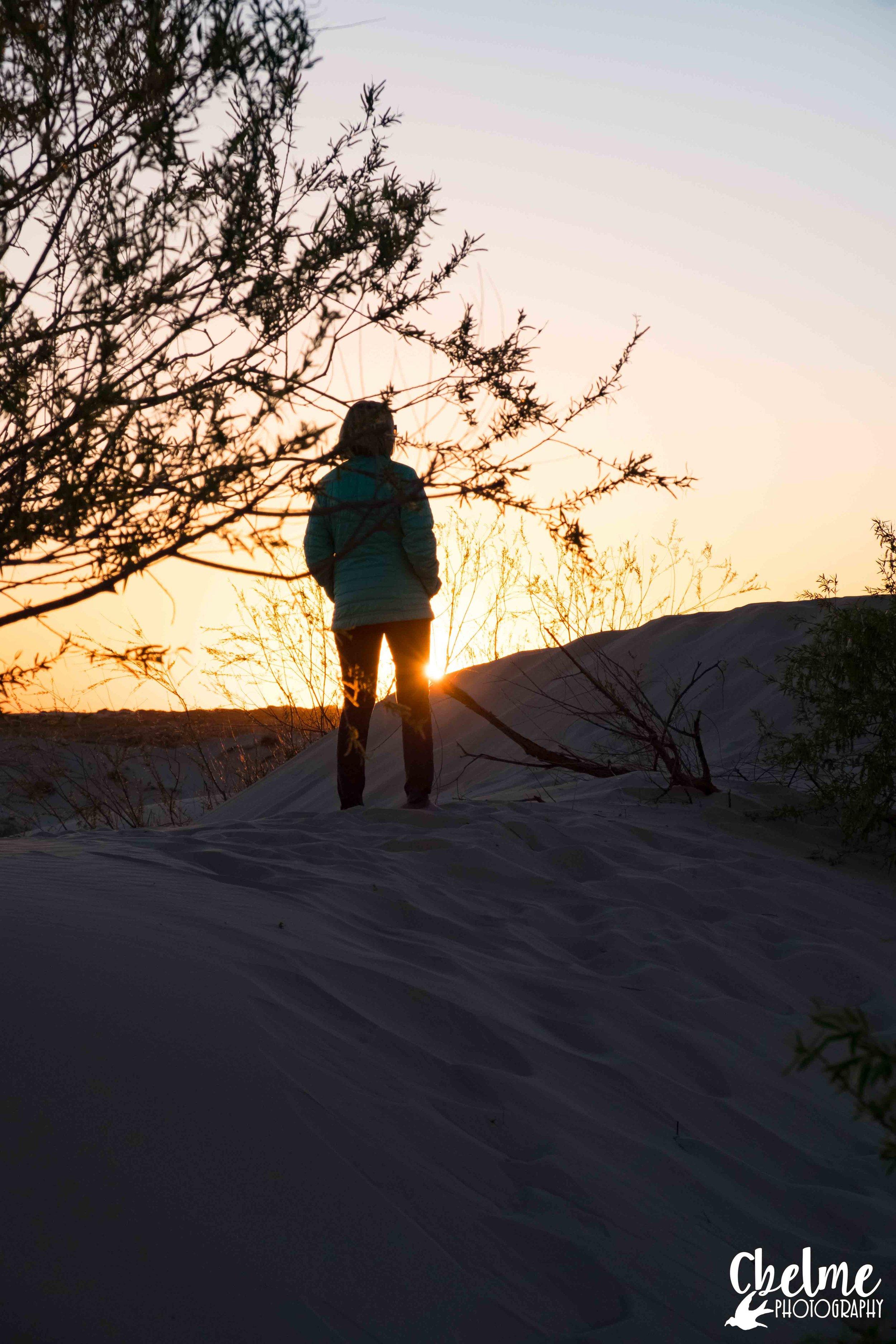 Monahans Sand Hills State Park