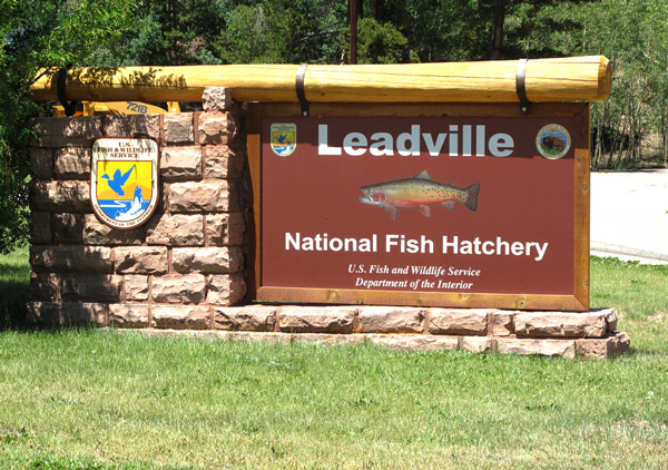 leadvilleSign.jpg