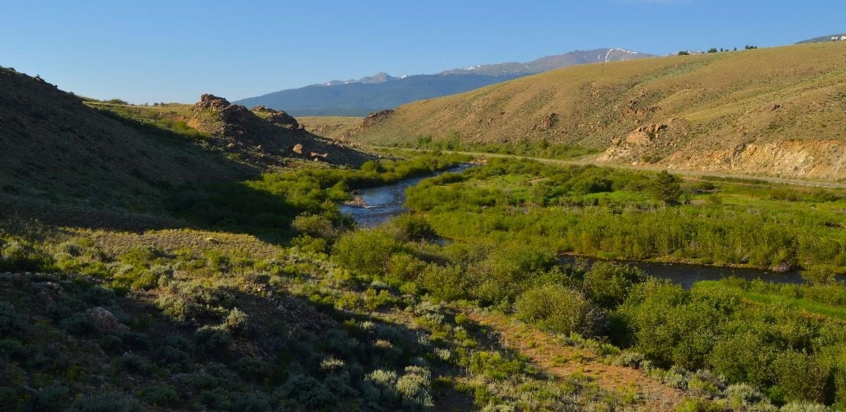 Picture provided by Central Colorado Conservancy.