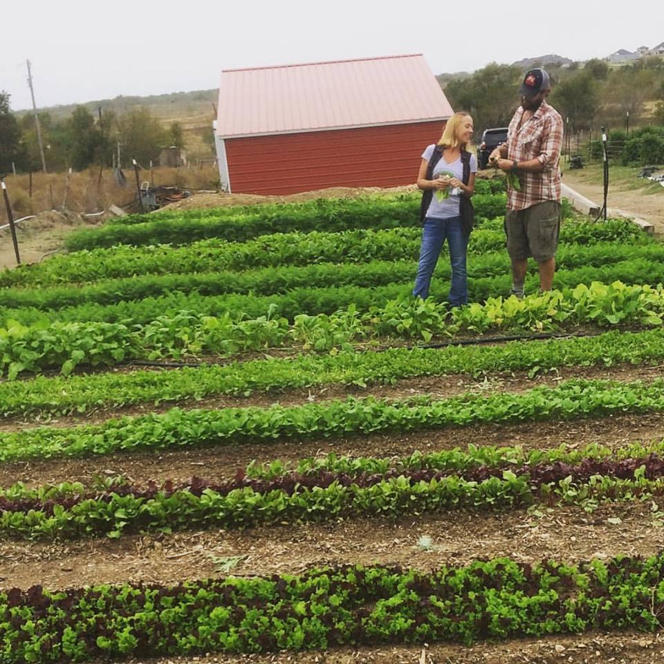 Fagan Family Farms