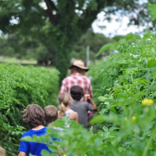 Gray Gardens: Farm Field Trip!
