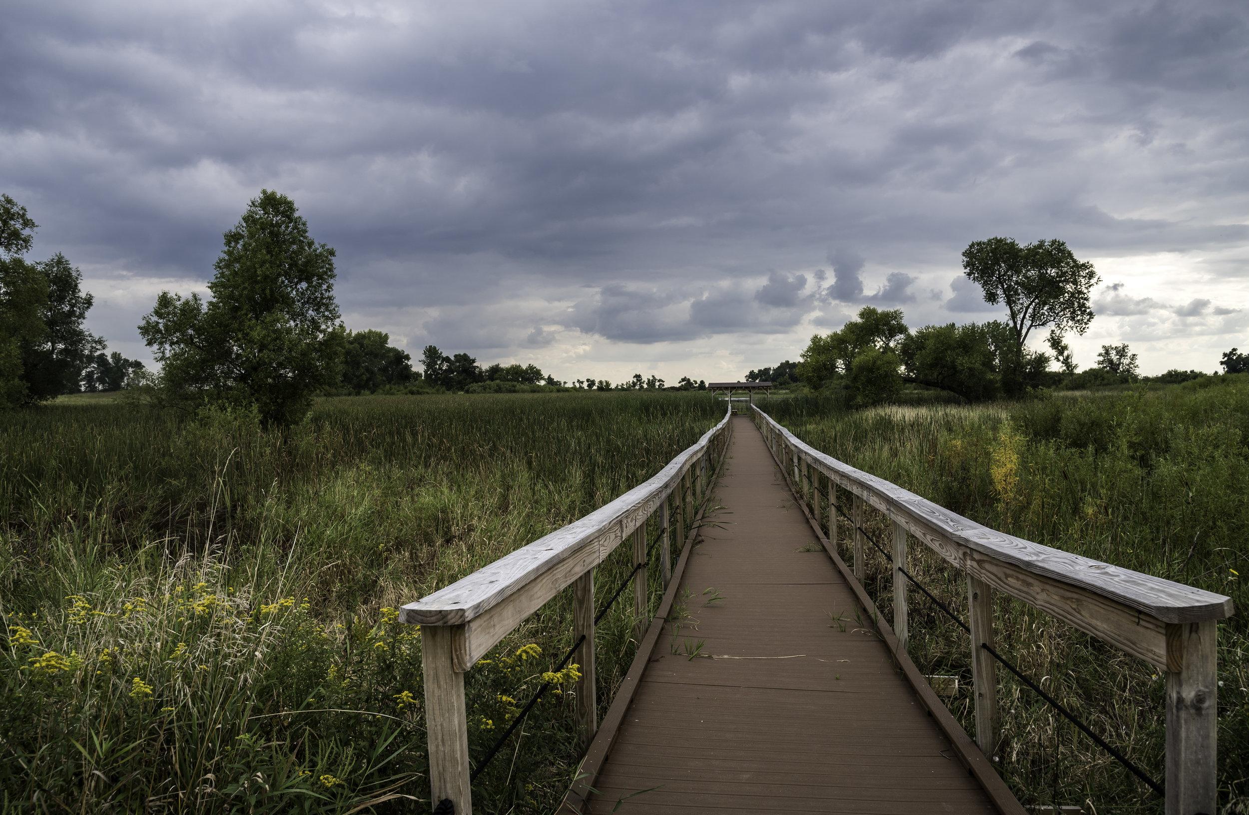 boardwalk-walkway-at-horicon-marsh.jpg