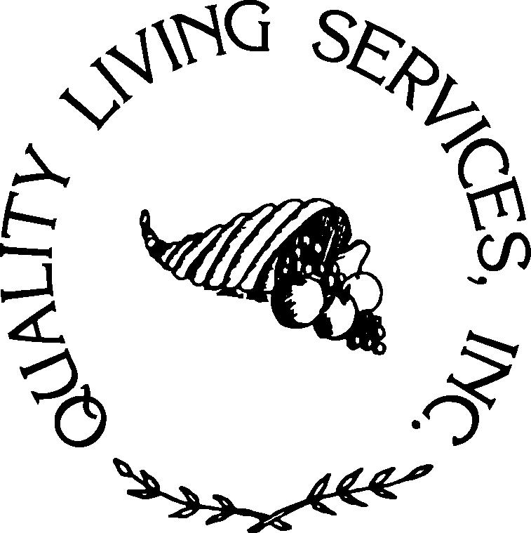 qls_logo.png