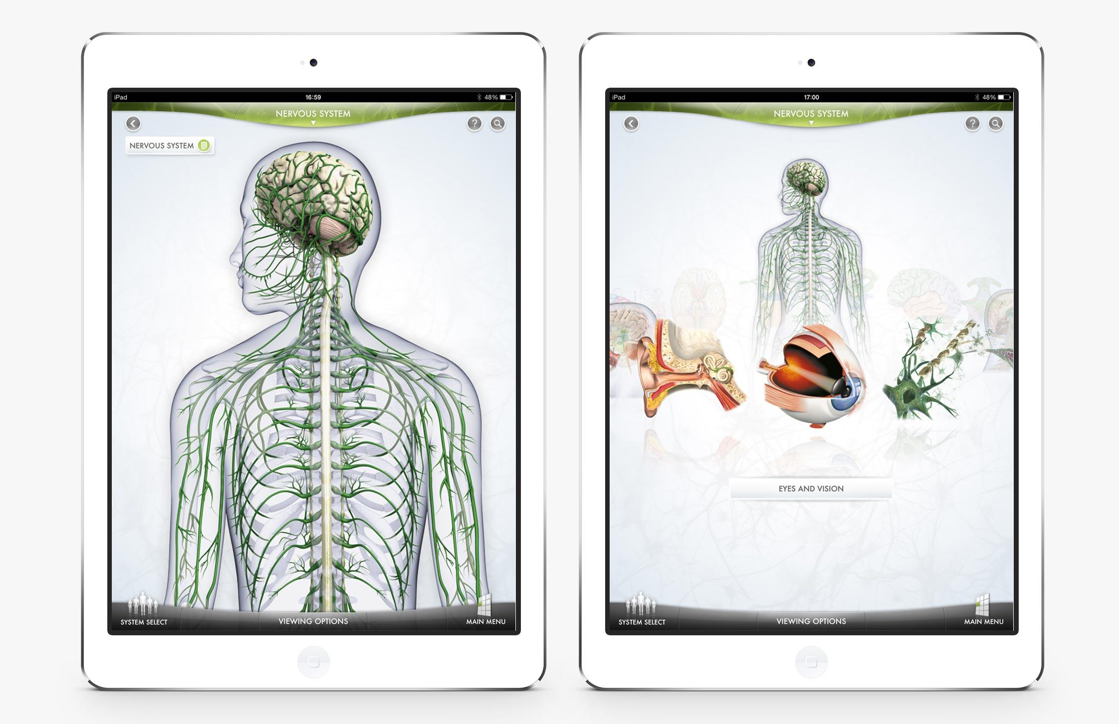 The-Human-Body-3.jpg