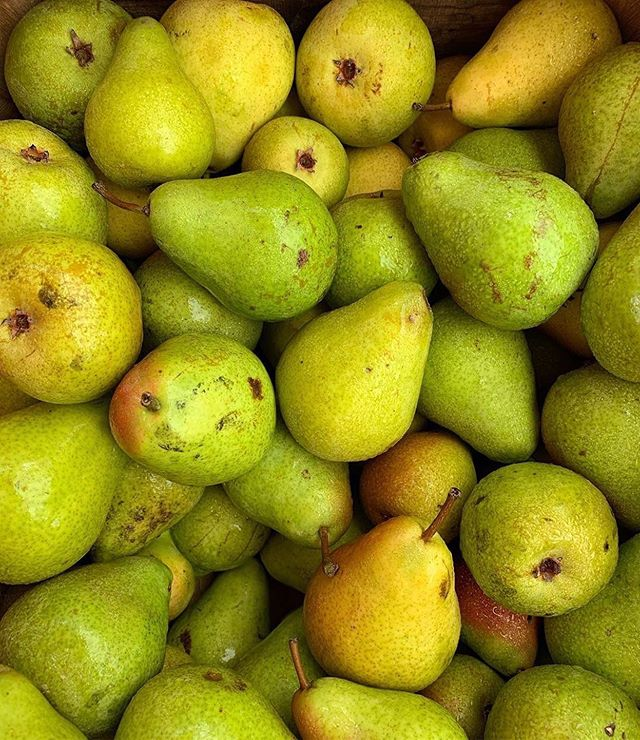 Excited to rotate some fresh juicy sweet pears into the upcoming fall mix!🍃🍂⁣ ⁣ These lovely bright delights do much more than livening up a table setting. 🍽Check out a few of their many benefits!⁣ ⁣ 🍐A wonderful source of fiber to help keep that digestive tract running smoothly⁣ 🍐Contain loads of antioxidants like Vitamin C, K and copper - all geared to clean up free radicals, protect our cells and keep our skin, bones, and teeth in shape⁣ 🍐Pears also contain potassium which can help flush excess sodium from our bodies and aid in the risk of high blood pressure⁣ 🍐Can be a smart snack choice before or after exercise - the fiber content will help you maintain energy throughout and the natural sugar component is a great refill for glycogen stores post-workout⁣ ⁣ Added to a salad 🥗with almonds, goat cheese, and a balsamic glaze - yum! Roasted pears with walnuts and honey or just plain raw from the fruit basket! So many delicious ways to enjoy this gift from nature.💚⁣ ⁣ What is your favorite way to eat pears and work them into your recipes? I am listening with my tastebuds here...🤤⁣ ⁣ 📸: @freshfarmdc