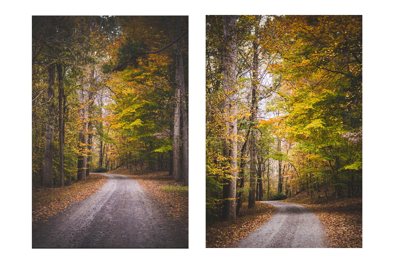 fall2017E.jpg