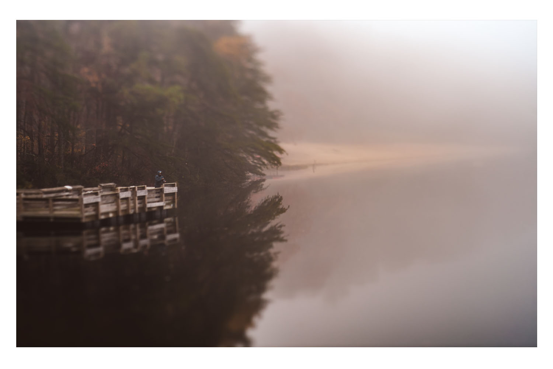 into the fog 6.jpg